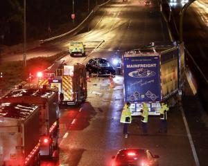 The crash happened on the Southern Motorway near East Tamaki. Photo: NZ Herald