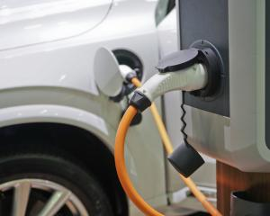It will be hard to import the EVs in numbers the government wants before 2030, the industry says....