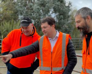 Looking at the new tech are Pamu Landsdown farm manager Matthew Hamilton (left), Iris Data Science managing director and co-founder Greg Peyroux and lead data scientist and co-founder Benoit Auvray. PHOTO: GEORGE DAWES