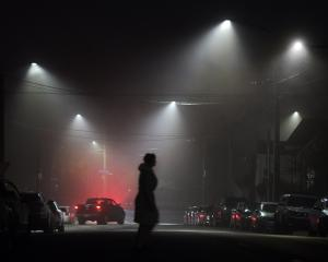 Some of Dunedin's new LED lights shine through the fog at the intersection of Royal Tce and...