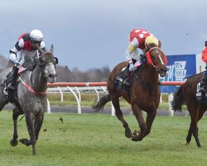 Full Fury (left), in the hands of Rohan Mudhoo, wins the Queen's Birthday Handicap at Wingatui...