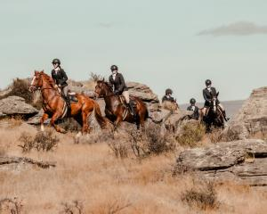Leading a pack of riders through schist rock at an Otago Hunt Inc event in Middlemarch in April...
