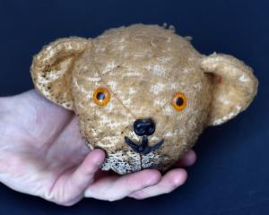 The missing head of Play School soft toy cast member Little Ted has been found, but the location...
