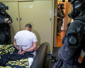 A person is detained by police after its Operation Ironside against organised crime. Photo:...
