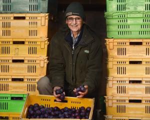 Wes Reichel has attended his last Otago Farmers Market as a vendor. PHOTO: PETER MCINTOSH