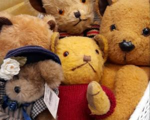 Some of the handcrafted teddy bears of the AshBEARton Teddy Bear Club members. Photo: Supplied