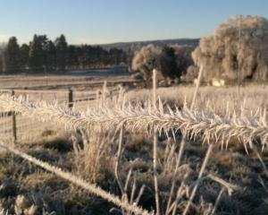 Central Otago experiences regular heavy frosts through winter. Photo: ODT file