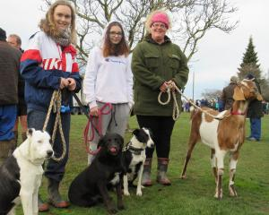 Ellen Jones (left), Tori Cheals (centre) and Jen Bothwell, of Southbridge, along with goat...