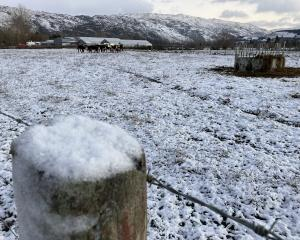 Otago-Southland farmers may not have much feed to spare this winter to help their drought and...