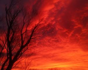 Sky on fire in Dipton