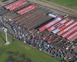 Tractors and utes gather at the Invercargill saleyards. PHOTO: MATTHEW ROSENBERG