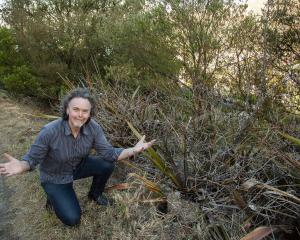 Nick Jackman wants his home protected from the fire risk presented by Urumau Reserve. Photo:...