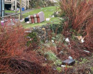 Rubbish from a Leith St student party spills down the Water of Leith bank yesterday. PHOTO:...
