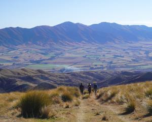 Magnificent views can be seen from Sole to Soul's guided walk on the top of Collie Hills farm.