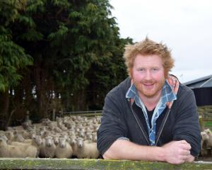 Will Orpwood Cattle & Sheep Scanning owner Will Orpwood takes a break from scanning ewes on a...