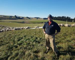 Back in April, when he could see his winter feed was going to be tight, Mahinerangi farmer Dave...