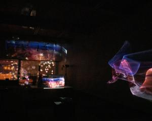 The video installation Bruno's Thin Skin, by Dunedin artist David Green, takes shape in a George...