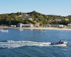 Four vaccinators are on Stewart Island for the two-day clinic and will return next month to...