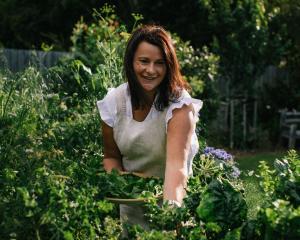 Anna Hiatt picks winter greens in her Wanaka garden. PHOTOS: SUPPLIED/HIATT & CO