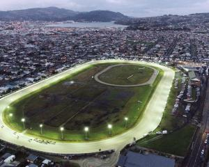 Horses thunder around the Forbury Park home bend as action gets under way on the last night of...
