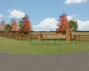 Darfield's Torlesse Estate stage three sections had an average of four offers on each. Image:...