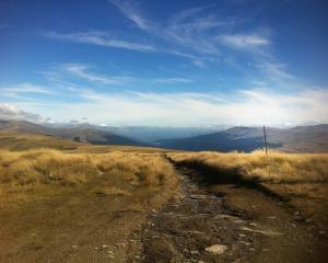 A snow pole on the Old Man Range. Photo: ODT files