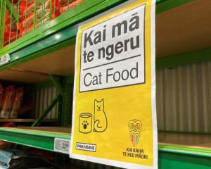 Cat food was running low at this Pak'nSave Photo: RNZ / Tom Kitchin