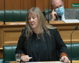 Invercargill National MP Penny Simmonds speaks on the Water Services Bill in Parliament on...