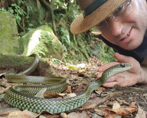 Former Timaru man James Osborne spends his free time tracking and filming the wildlife he finds...