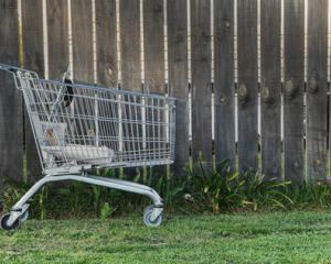 Reporting abandoned shopping trolleys was just one of four litter themes targeted in a ...
