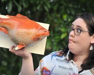 Otago Museum natural science curator Emma Burns with Wanda, the goldfish which went wild and grew...