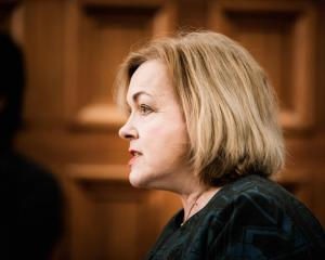Judith Collins. Photo: RNZ / Samuel Rillstone