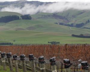 The Waipara wine region, north of Christchurch.PHOTO: GETTY IMAGES