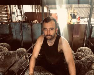New Zealand entrepreneur Jovian Cummins takes a break from shearing in Western Australia this...