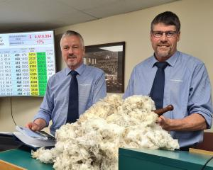 PGG Wrightson South Island auction manager Dave Burridge (left) and auctioneer Doug McKay with 13...