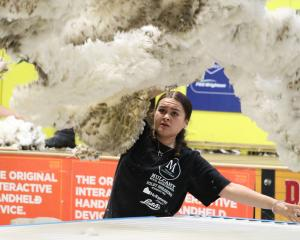 Anahera Cannell, of Alexandra, throws the fleece in a woolhandling heat at the Waimate Shears at...