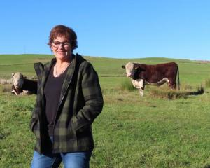 Roxburgh farmer Robyn Pannett caught Covid-19 last year and is still feeling the impact of the...