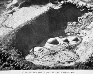 Boiling mud pool Porridge Pot, Rotorua — Otago Witness 27.12.1921