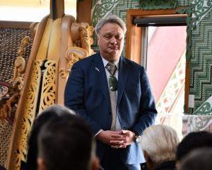 A Matariki public holiday would be for all New Zealanders to share, Te Tai Tonga Labour MP Rino...