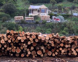 A logging truck travels  past a firewood business in Ravensbourne, on State Highway 88.