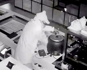 A CCTV image of an offender allegedly stealing items from the T-Sushi restaurant in Ferrymead....