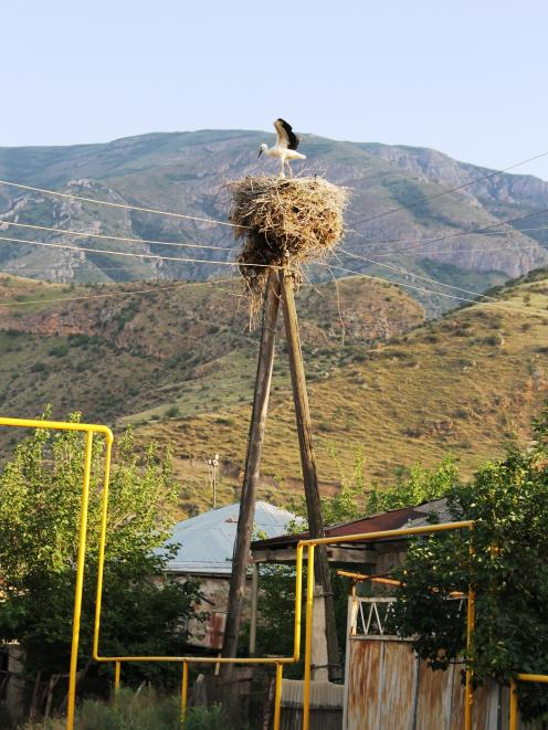 A young stork stretches its wings above a colourful jungle gym of Soviet -era reticulated gas...