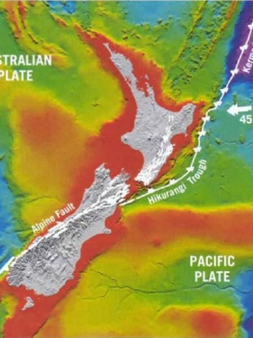The Alpine Fault runs about 500km up the western side of the South Island between Milford Sound...