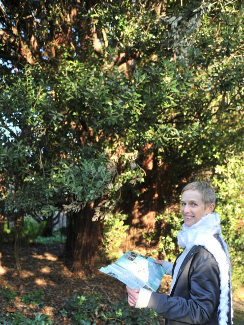 Clare Fraser makes her way along Dunedin Botanic Garden's new tree trail.PHOTO: CHRISTINE O...