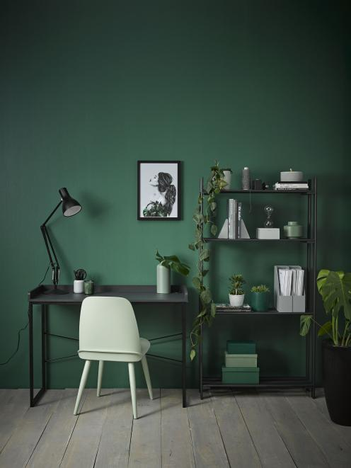 Dark, leafy plants and flowers are another excellent way to add more visual texture to dramatic...