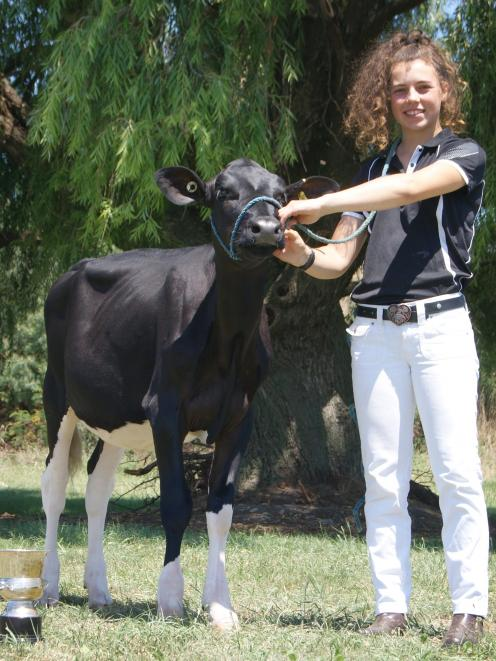Miss Button after winning the 2018 Paramount Cup awarded to the top Holstein Friesian Black and...