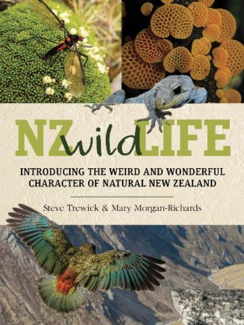 NZ WILD LIFE<br>Introducing the Weird and Wonderful Character of Natural New Zealand<br><b>Steve Trewick and Mary Morgan-Richards</b><br><i>Penguin</i>
