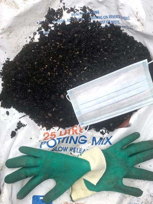 Always use a mask when using potting mix. A sturdier type rather than the one shown is...