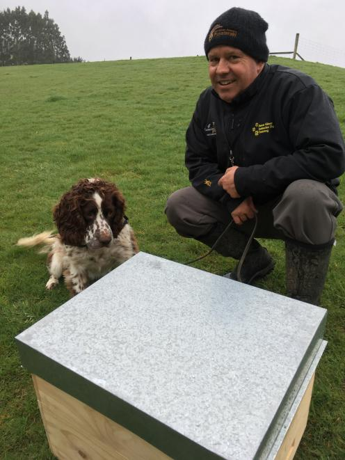 Dog trainer Rene Gloor trains English springer spaniel Flynn to detect the American foulbrood...