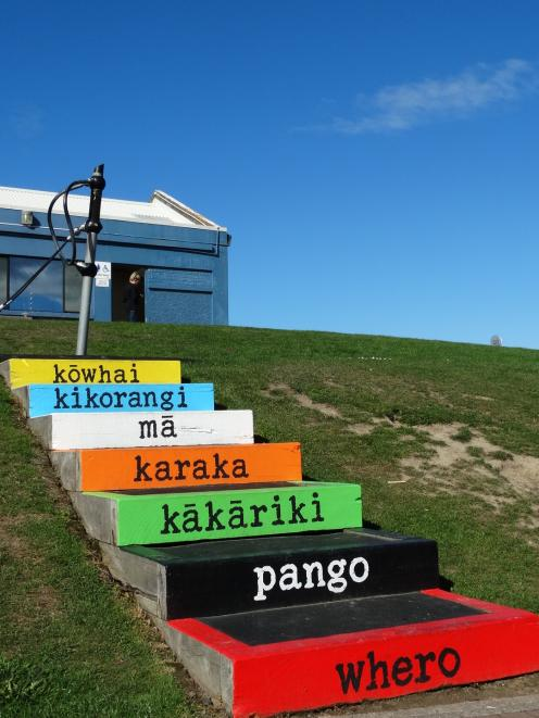 Brightly coloured steps at St Clair Playground have their colours described in Maori as part of the  ''Poems on Steps'' project. PHOTO: BRENDA HARWOOD